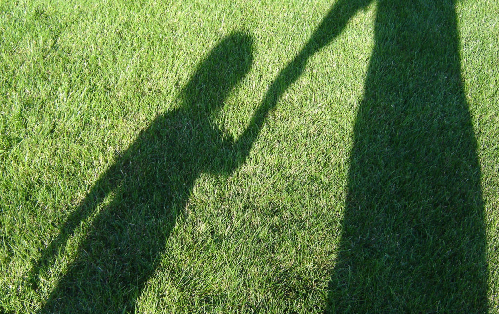 Green grass showing a shadow of a child holding a grown up's hand
